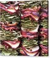 Garlands Of Apple Spice Potpourri Canvas Print