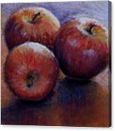Apples IIi Canvas Print