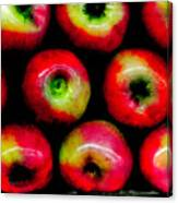 Apples Canvas Print