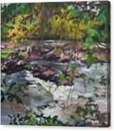 Appomattox View Canvas Print