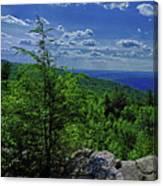 Approaching Little Gap On The Appalachian Trail In Pa Canvas Print
