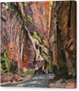 Apricot Canyon 2 Canvas Print