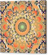 Apricot Shoe Dance Canvas Print