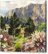 April Hike Canvas Print