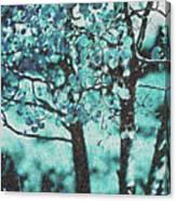 Aqua Aspens Canvas Print
