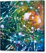 Aquarium Galaxy Canvas Print