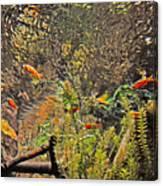 Aquarium Reflections Canvas Print