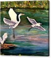 Arabesque Canvas Print