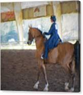 Arabian Dressage Canvas Print