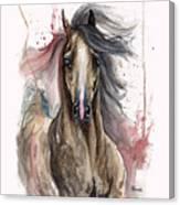 Arabian Horse 2013 10 15 Canvas Print