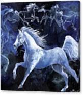 Arabian Night Canvas Print