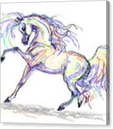 Arabian Stallion Talk Canvas Print