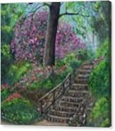 Araluen Abloom Canvas Print