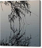 Arbor Reflections Canvas Print