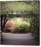 Arbor Walk Canvas Print