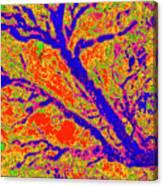 Arboreal Plateau 36 Canvas Print