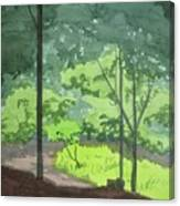 Arboretum Path Canvas Print