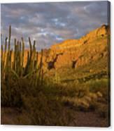 Arch Canyon 3 Canvas Print