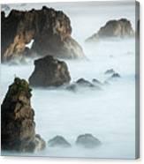 Arched Rock Sea Bird Canvas Print
