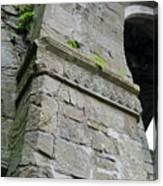 Architecural Detail At Irish Jerpoint Abbey County Kilkenny Ireland Canvas Print