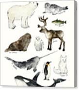Arctic And Antarctic Animals Canvas Print