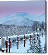 Arctic Light Canvas Print