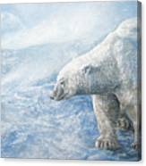 Arctic Sovereign Canvas Print