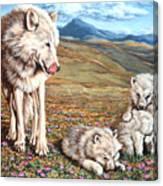 Arctic Summer Canvas Print