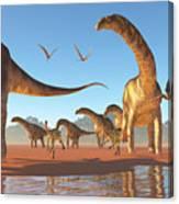 Argentinosaurus Herd Canvas Print