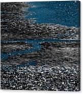 Argento Canvas Print