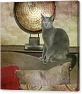 Cat-tastic Canvas Print