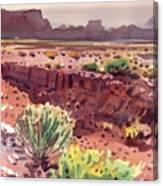 Arizona Arroyo Canvas Print