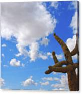 Arizona Blue Sky Canvas Print