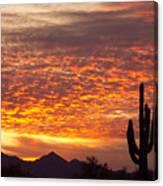 Arizona November Sunrise With Saguaro   Canvas Print