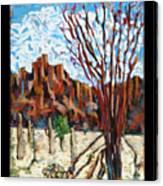 Arizona Trees In Blossom Canvas Print