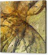 Arraignment Surface  Id 16097-222826-11240 Canvas Print