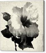 Art Is The Hibiscus -black And White Canvas Print