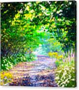 Art Rendered Country Pathway Canvas Print