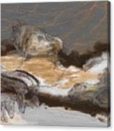 Art Rupestre Canvas Print