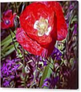 Artistic Kentucky Red Poppy Canvas Print