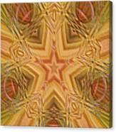 Artistic Star Of Texas Canvas Print