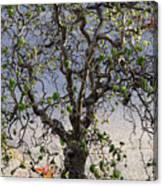 Artistic Tree Canvas Print