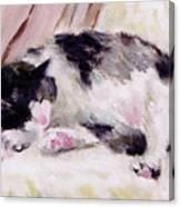 Artist's Cat Sleeping Canvas Print