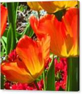 Artsy Tulips Canvas Print