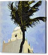 Aruba Palm Canvas Print
