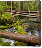 As The Creek Flows Canvas Print