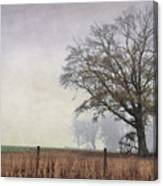 As The Fog Sets In Canvas Print