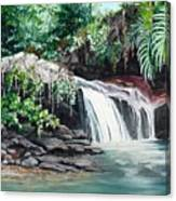 Asa Wright Falls      Sold Canvas Print