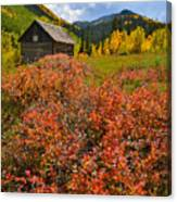 Ashcroft Cabin Canvas Print