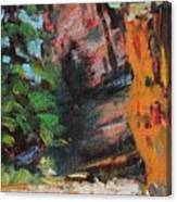 Ashdown Gorge Of Zion Canvas Print